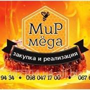 Мёд подсолнуха купить оптом. фото