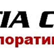 Апостиль и легализация документов в МИДе, МинЮсте, Министерстве образования. фото
