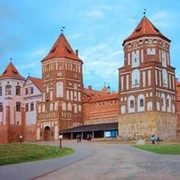 Экскурсия Беловежская пуща + музей Природы + вольеры с экскурсией в усадьбу Деда Мороза фото