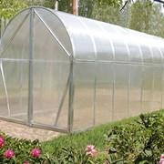 Садовые теплицы - Перчина-М фото