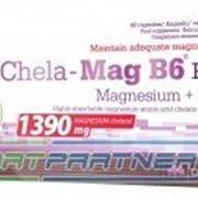Chela-mag B6 Forte 60капс фото