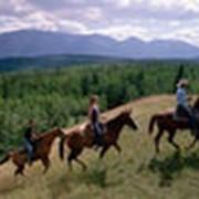 Конные походы фото