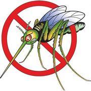 Отпугиватель комаров ультразвуковой фото