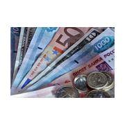 Поддержка итальянских предпринимателей в Молдове фото