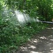 Борьба с комарами фото