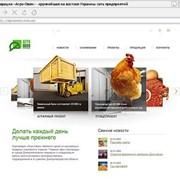 Бизнес сайт фото