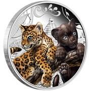 """Котята ягуара Серебряная монета серии """"Котята-хищники"""" фото"""