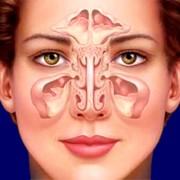 Операции по улучшению носового дыхания,выполненных с помощью эндоскопических и лазерных технологий ЛОР фото