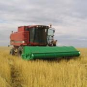 Жатки зерновые - Славянка УАС-5 фото