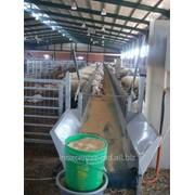 Кормушки для овец фото