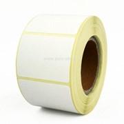 Этикетки 30х20 мм (полипропилен съемный клей) (2000 эт. в рол., вт.40) фото