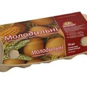 Упаковка для яиц картонная фото