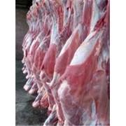 Мясо в полутушах фото