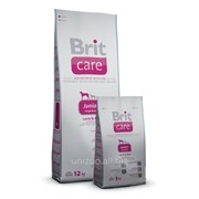 Сухой корм для щенков Brit Care Junior Large Breed 12 кг фото