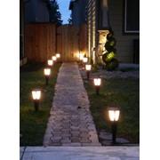Вечерняя подсветка цветников и клумб фото