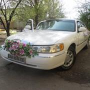 Аренда Линкольн таун кар на Вашу свадьбу фото