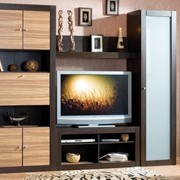 Изготовление мебели под заказ для гостинной фото