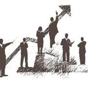 Исследования рынка и изучение общественного мнения фото