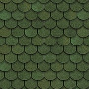 Гибкая черепица Shinglas Танго, зеленый фото