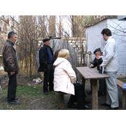 Маркетинговые исследования рынка Молдавии фото