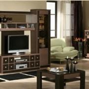 Мебель для гостиной Ретро фото