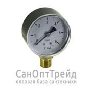 """Манометр 1/4"""" вертикальный (радиальный) 6 бар TiM фото"""