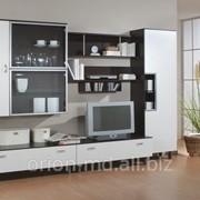 Мебель для гостиной от Orion SRL фото