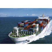 Морские контейнерные перевозки грузов фото