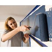 Исследование лакокрасочных материалов и покрытий фото
