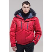 Мужская зимняя куртка 0282 фото