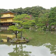 Японско - Китайские Языковые курсы фото