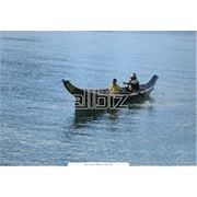 Водные путешествие на каноэ фото