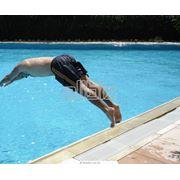 Шорты для плавания мужские фото