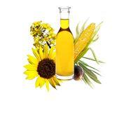 Растительные масла фото