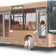 Низкопольный автобус МАЗ 206 фото