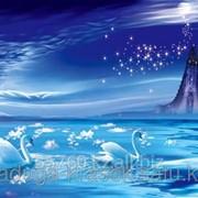 Картина стразами в 3Д Лебеди в ночи 50х37 см фото