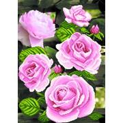 Рисунок на шелке р.37/49 Цветы любви фото