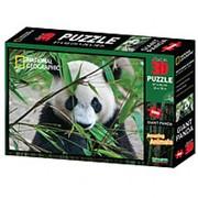 Стерео пазл PRIME 3D 10071 Большая панда фото