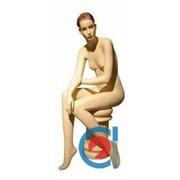 Манекен женский элитный АМ - 05. фото