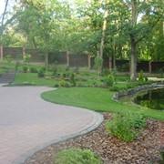 Ландшафтный дизайн сада,ландшафтный дизайн Киев, Кременчуг, Украина фото