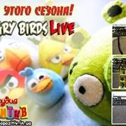 Аттракцион Angry Birds фото