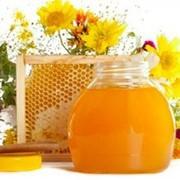 Мед цветочный   Мед степного разнотравья от производителя фото
