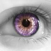 Цветные контактные линзы Офтальмикс-Butterfly фото