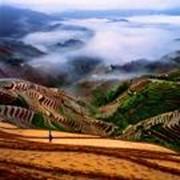 Поставка товаров из Китая фото