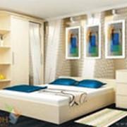 Спальный гарнитур, код 16 фото