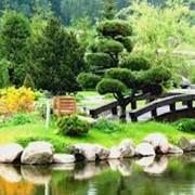 Ландшафтный дизайн сада от Borintex фото