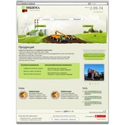 Сайт Enbima.ru фото