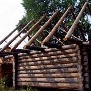Дома деревянные срубы в Украине под ключ фото