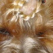 Декоративная коса фото