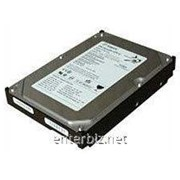 Накопитель HDD SATA 250GB Seagate DB35.2 7200rpm 8MB (ST3250824SCE) фото
